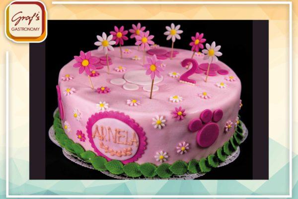 Geburtstagstorte4
